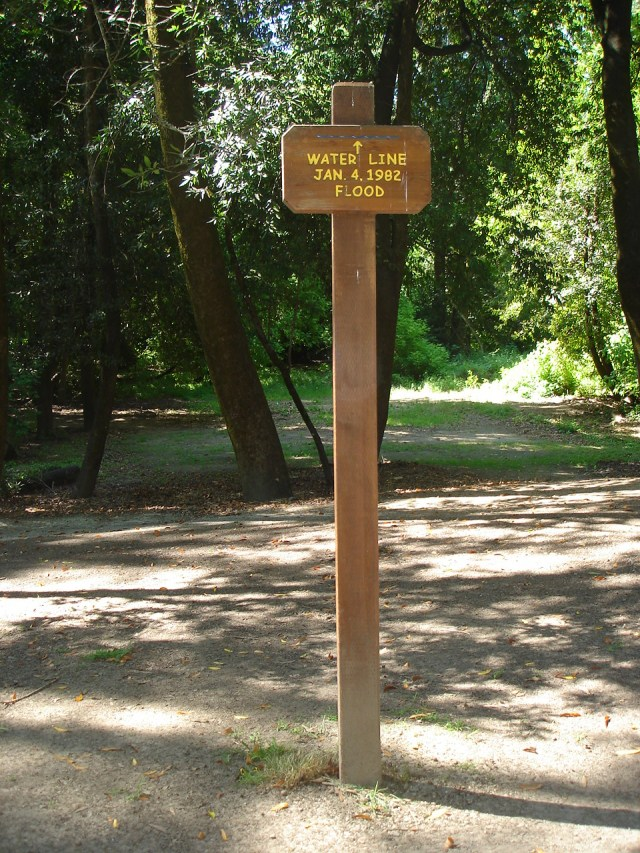 Henry Cowell State Park. Flood water line mark Jan. 4, 1982.
