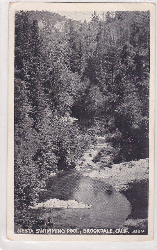 Swimming hole, San Lorenzo River near Siesta in Brookdale under Irwin Way Bridge. Courtesy of Derek Whaley.